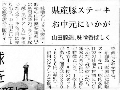 nikkei_bianka_180606.jpg
